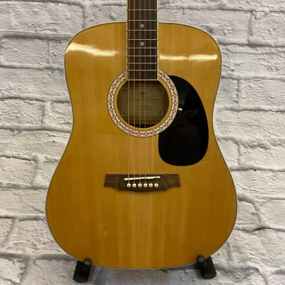Arcadia DL41 NA Acoustic Guitar for sale