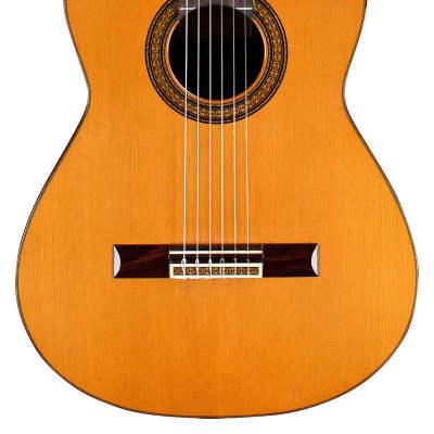 Manuel Contreras 1972 Classical Guitar Cedar/Indian Rosewood for sale