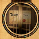 2017 Taylor 914CE Grand Auditorium V-Class ~ Natural