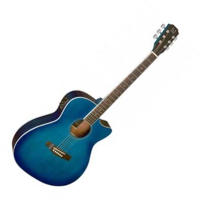 James Neligan Electro Acoustic Guitar - Blue Burst for sale