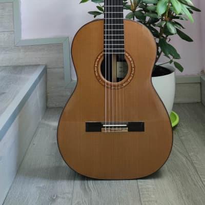Michael Ritchie Guitarra. Guitar de Concierto 2007 for sale