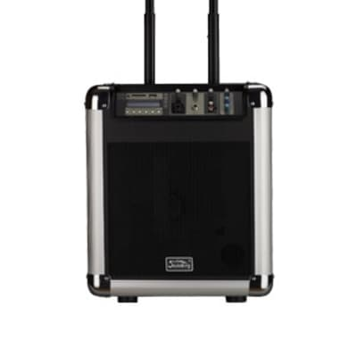 Soundking PA8M Speaker System with MP3 and Microphone, Portable, Rechargeable, 25W for sale