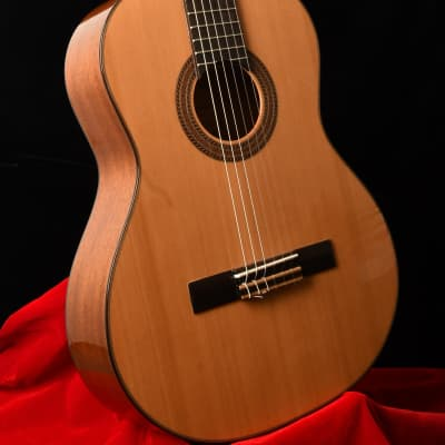 J. Navarro NC-41 Classical Spanish Style Guitar for sale