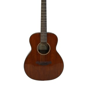 3/4  Size Acoustic Steel String Guitar TLG-17 3/4 for sale