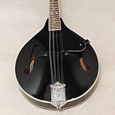 Savannah SA-100  Acoustic A Style Mandolin Gloss Black for sale