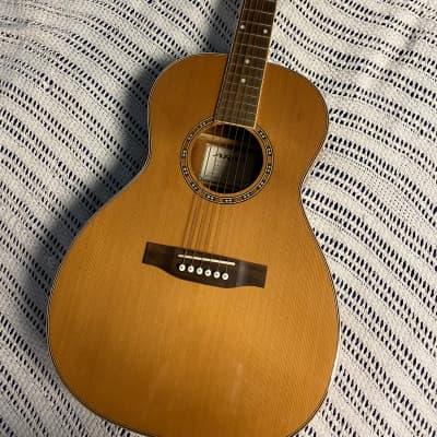 Aria AP - STD Parlor Guitar for sale