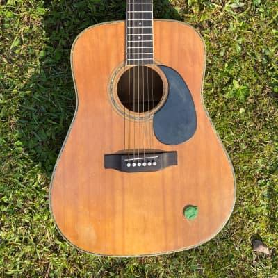 Fannin D-57 1978 Acoustic for sale