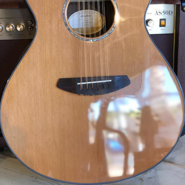 Breedlove Solo Concert 12-String Acoustic-Electric Guitar Natural image