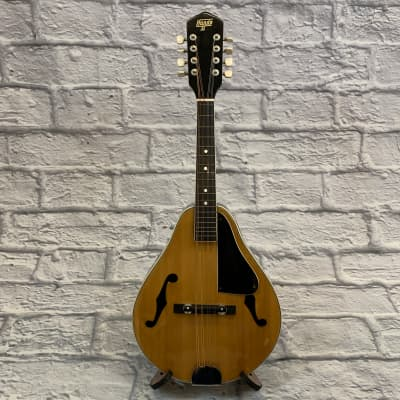 Vintage Hondo II A-Style Mandolin for sale
