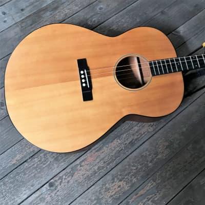 Gold Tone TG-18 Tenor Guitar