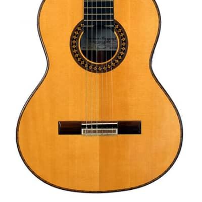 Amalio Burguet Modell V Vanessa Konzert Gitarre for sale