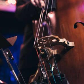 Ear Trumpet Labs Nadine Medium-Diaphragm Condenser Microphone