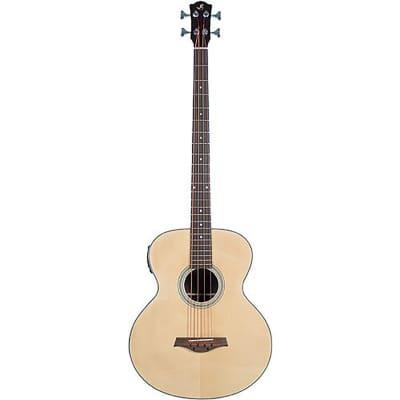 J. Reynolds JR1000 Spruce Top Nato Neck 4-String Acoustic-Electric Bass Guitar for sale