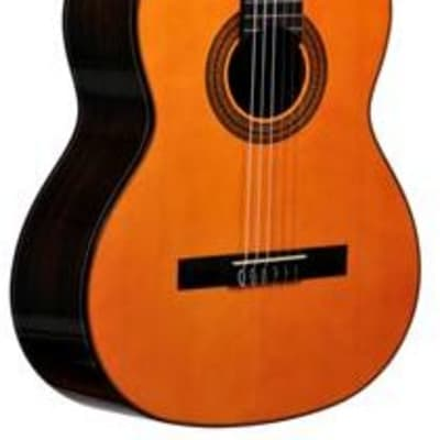 massive Zederndecke Ever Play Segovia CG90C Konzertgitarre