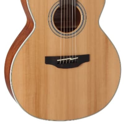 Takamine GN20CE Natural Cutaway Electro Acoustic for sale