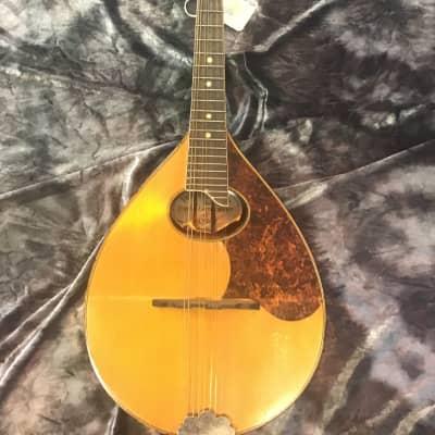 Rare Harmony Perfacktone Mandolin  1920's for sale