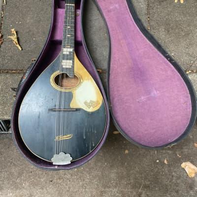 Regal  Le Domino ~1930 mandolin for sale