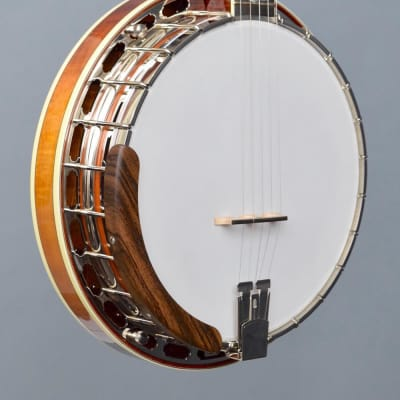 OME Ikon Professional Custom Resonator Banjo (#7272) for sale