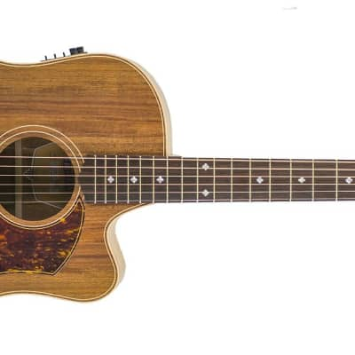 Cole Clark Custom FL2EC-BLBL - Fat Lady 2 Acoustic Electric Guitar for sale
