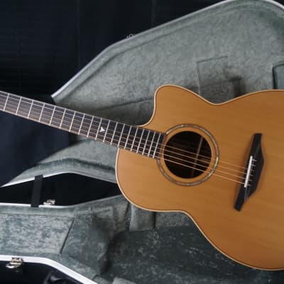 Brand New McIlroy A35c Western Red Cedar / Indian Rosewood Cutaway Auditorium Sized Acoustic for sale