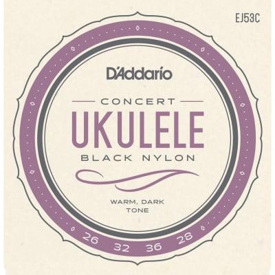 D'Addario EJ53C Ukulele Concert