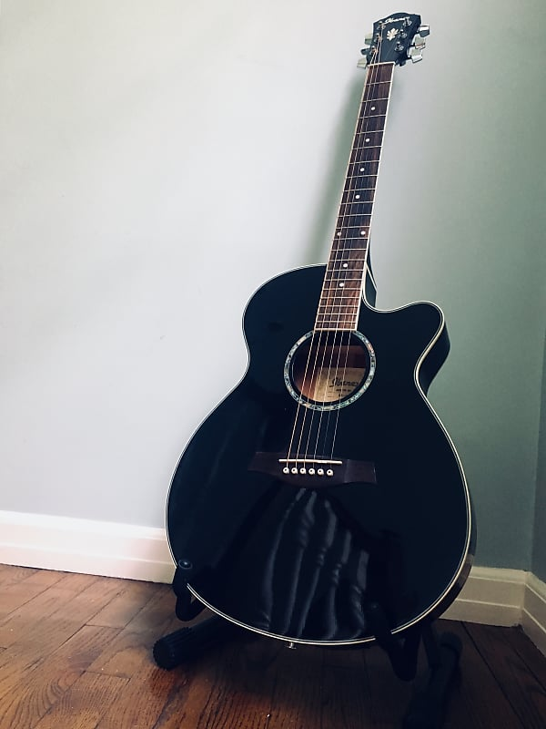 Ibanez Aeg10e Acoustic Electric Guitar Black Dg Gear Reverb