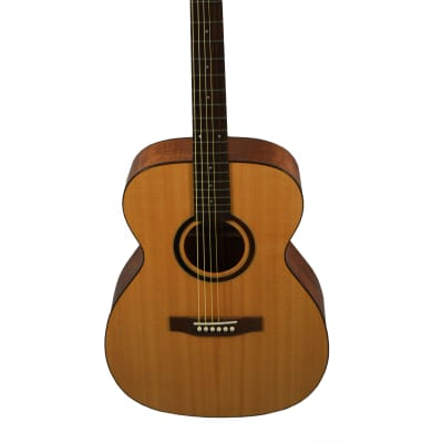 Ruben Guitars The Advantage Blackwood 2018 Satin for sale