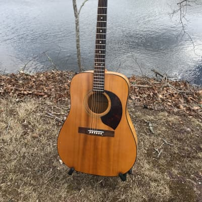 1972  Harptone E-6NC Solid Spruce and Maple Dreadnought with Original Chipboard Case Natural for sale
