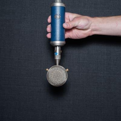 Blue Bottle Rocket