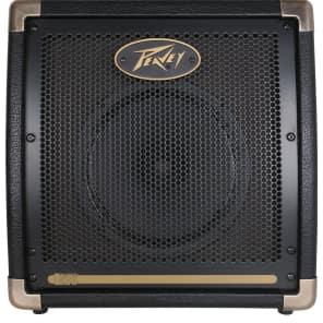 Peavey E20 Ecoustic 20W Acoustic Guitar Combo Amp
