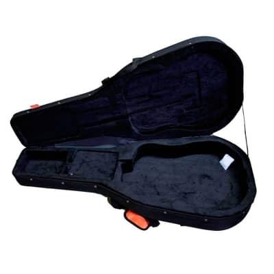 Ashton Armour ARM2400C Classical Foam Case