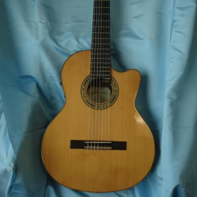 Kremona Fiesta 7  String Acoustic/Electric Guitar w/New Hard Case for sale