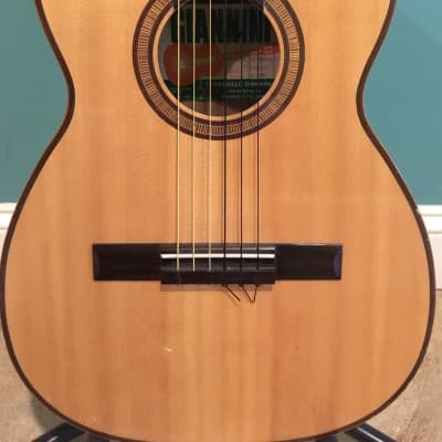Giannini AWN-50 Brazilian classical acoustic 1972 w/hard case for sale