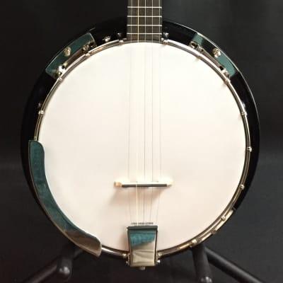 Savannah SB-080 18-Bracket 5-String Banjo for sale