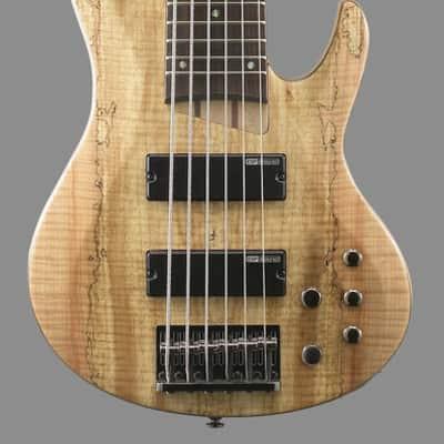 ESP LTD B-206SMNS Spalted Maple 6 String Bass Guitar, Natural Satin