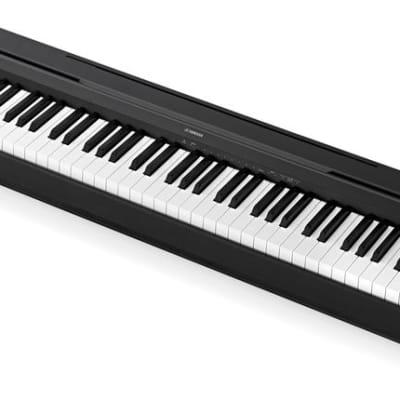 Wersi Grand Piano 88 Key Digital Piano With Road Case   Reverb