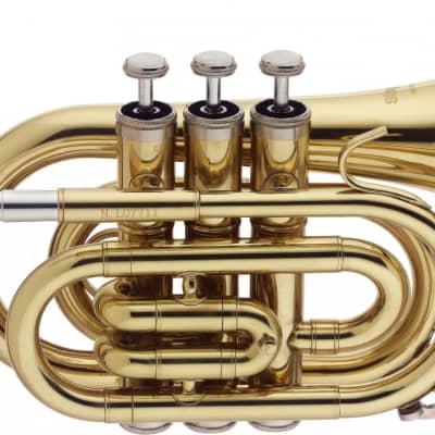 Stagg WS-TR245 Bb Student Pocket Trumpet w/ Case