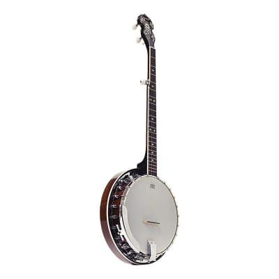 Ozark 5 String Electric Banjo and Padded Cover for sale