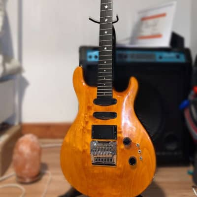 Hohner  SG lion professional  1980's Orange for sale