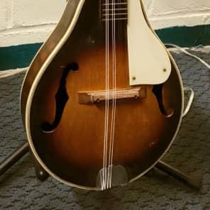 Kent Mandolin 60's Mandolin for sale