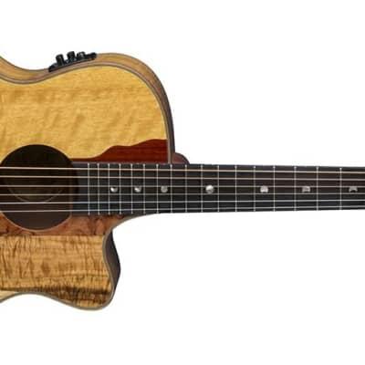 Luna VISTAEAGLE Luna Acoustic/Electric Guitar, Tropical Wood for sale