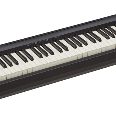 Roland FP-10 Portable Digital Piano with Speakers