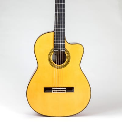 Pavan TP-30 Acoustic Cutaway Classical guitar (spruce & cedar) for sale