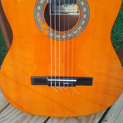 Lotus LC30 Classical Acoustic 80s? for sale