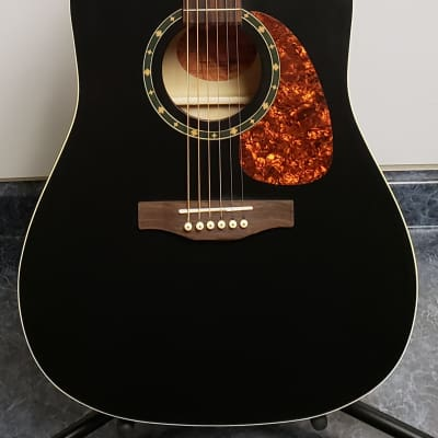 New Norman/Godin B-18 Cedar Black Acoustic for sale