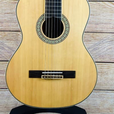Peavey Delta Woods CNS-1 Classical Nylon String Guitar for sale