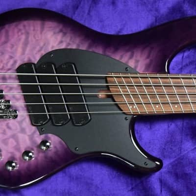 Dingwall Combustion (5-String), Ultra Violet / Pau Ferro / 3 Pickups *In Stock !