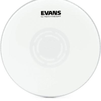 "Evans B12HW Heavyweight Coated Snare Drum Head - 12"""