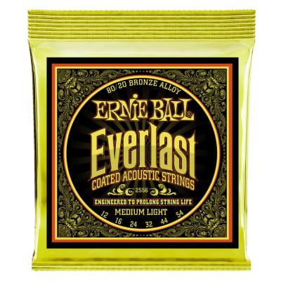Ernie Ball P02556 Everlast 80/20 Acoustic Guitar Strings .012 - .054