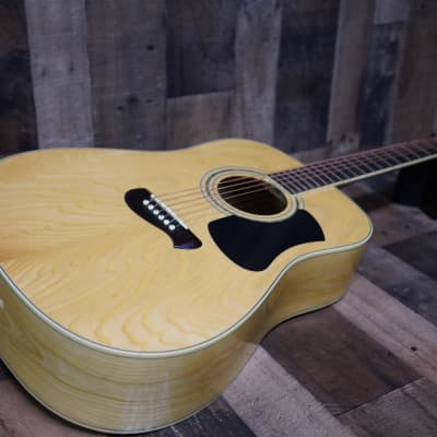 Olympia by Tacoma OD-12N 2000 Natural Maple Dreadnaught 6 String Acoustic Guitar for sale